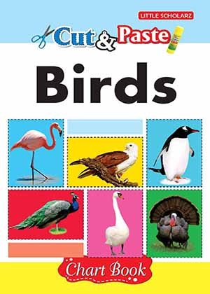 Cut & Paste - Birds