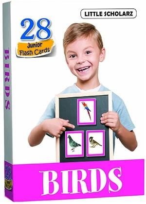Flash Cards - BIRDS